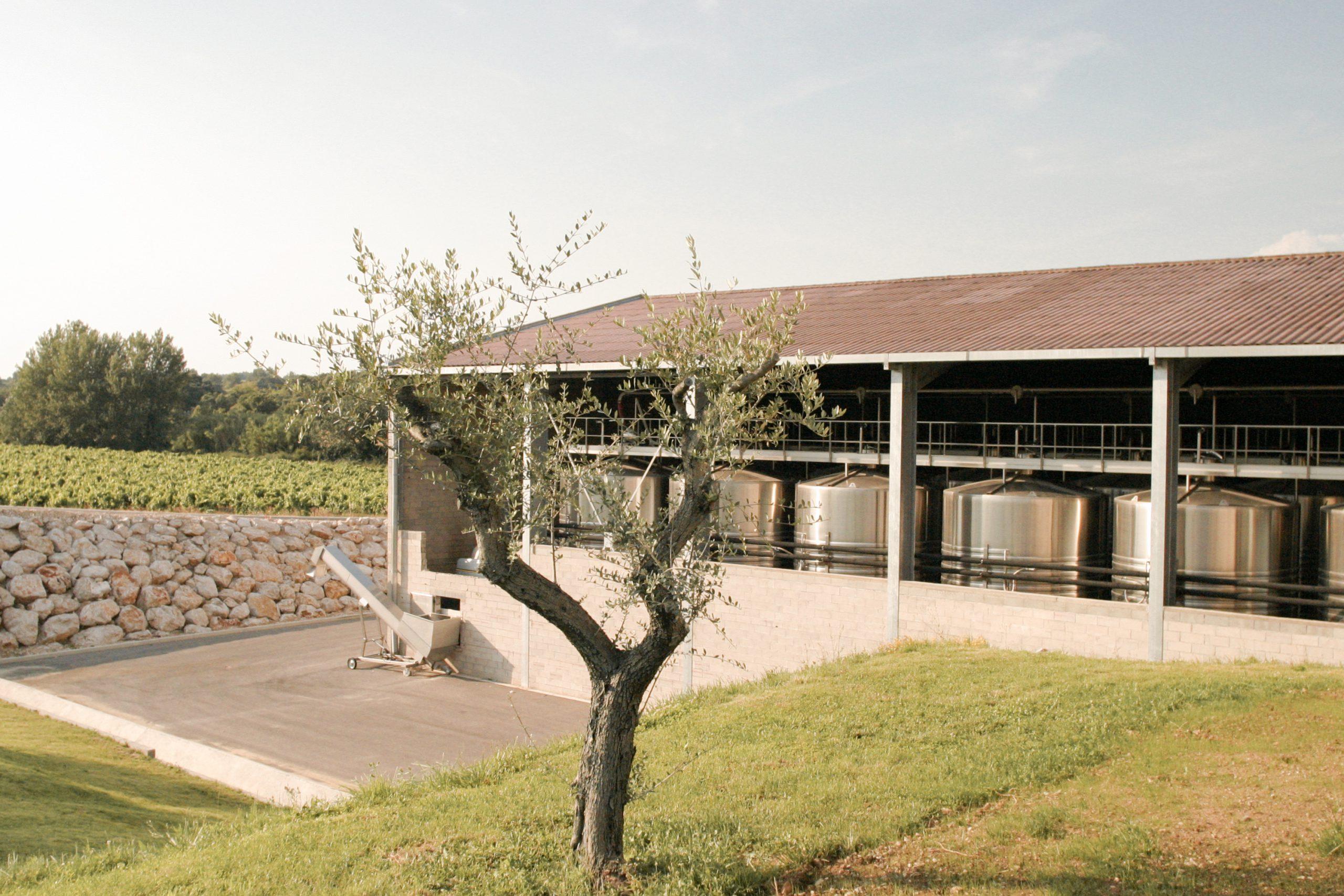 Caveau Les Coteaux de Montpellier